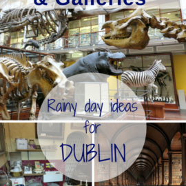Dublin Museum and Galleries