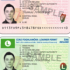 Driver Licensing in Ireland