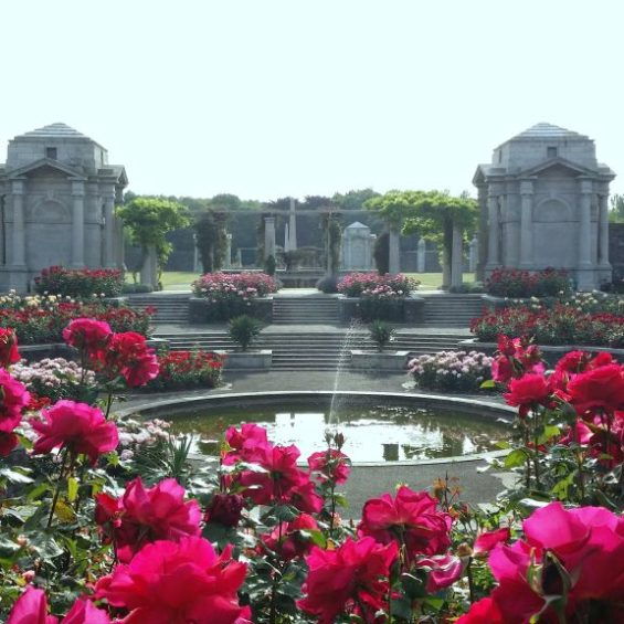 7 Must See Gardens In Dublin Relocating To Ireland