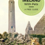 Moving to Ireland with Pets